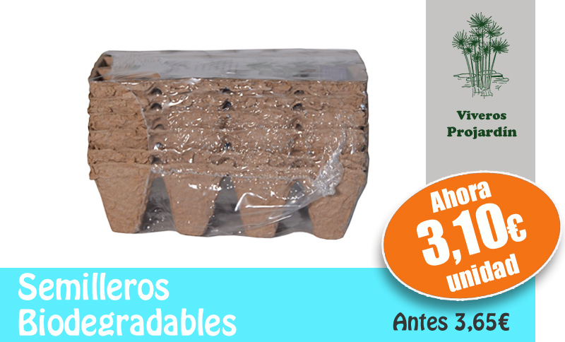 Ofertas for Vivero alcorcon